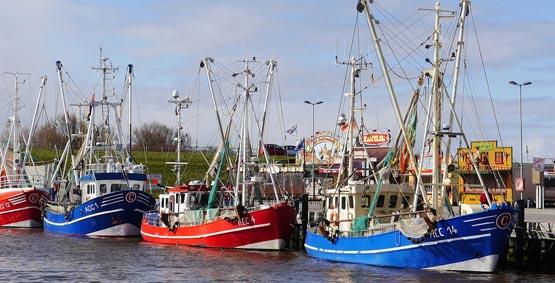 Erleben Sie den traditonellen Fischfang